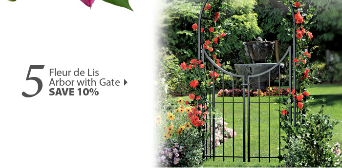 Fleur de Lis 