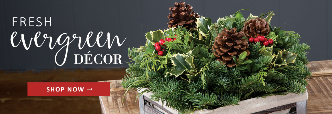 FRESH EVERGREEN DECOR -- SHOP NOW
