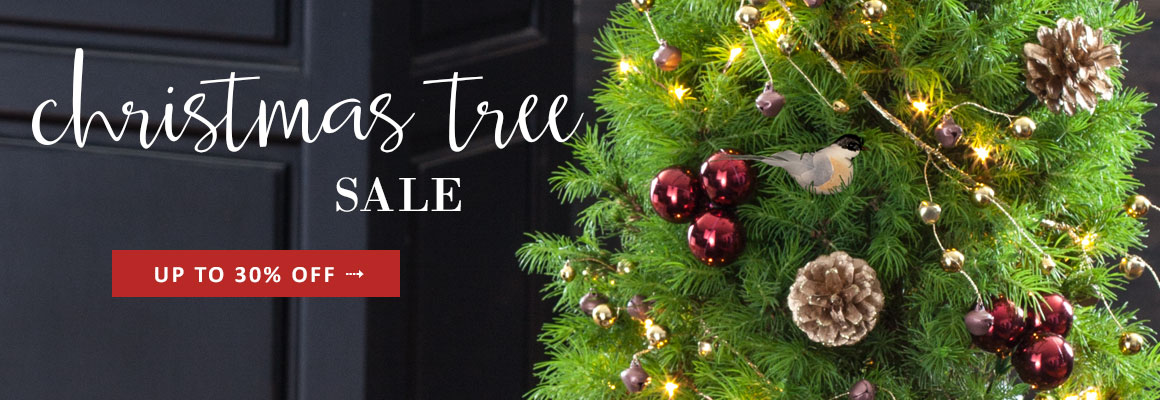 DECORATED TREES up to 30% OFF - SHOP NOW