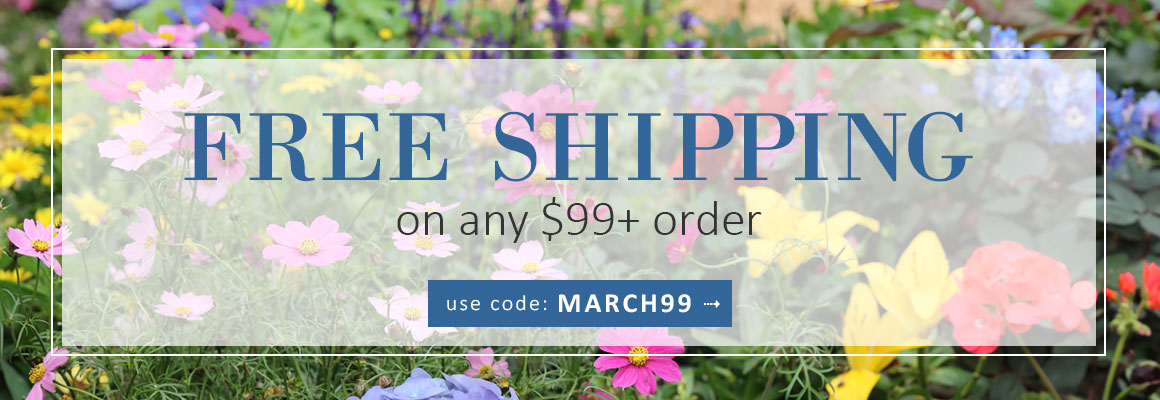 FREE SHIPPING on any $99+ use code: MARCH99