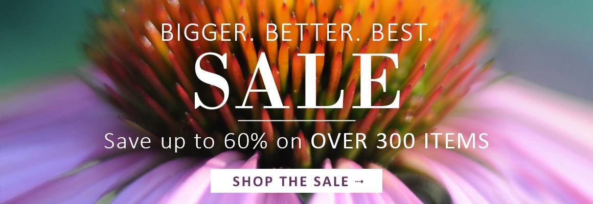 Bigger. Better. Best. SALE | Save up to 50% on OVER 300 ITEMS - SHOP THE SALE