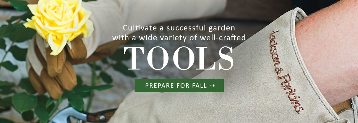 Cultivate a successful garden with TOOLS & ACCESSORIES - PREPARE FOR FALL