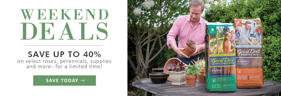 WEEKEND DEALS Save up to 40% on select roses, perennials, supplies and more - SHOP NOW