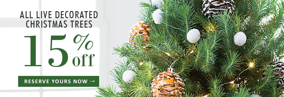 ALL LIVE DECORATED CHRISTMAS TREES 15% OFF for a limited time - RESERVE NOW