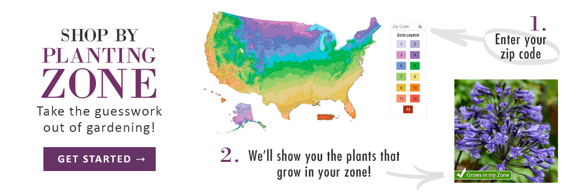 SHOP BY PLANTING ZONE - GET STARTED