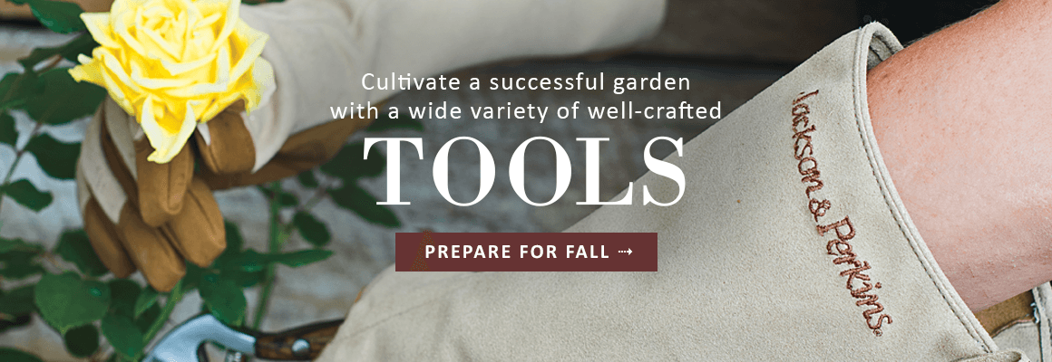 WELL-CRAFTED TOOLS - PREPARE FOR FALL