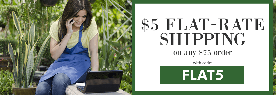 $5 FLAT RATE SHIPPING ON ANY $75 ORDER