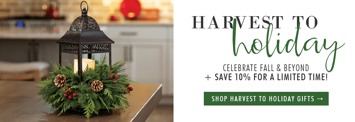 10% OFF HARVEST TO HOLIDAY GIFTS
