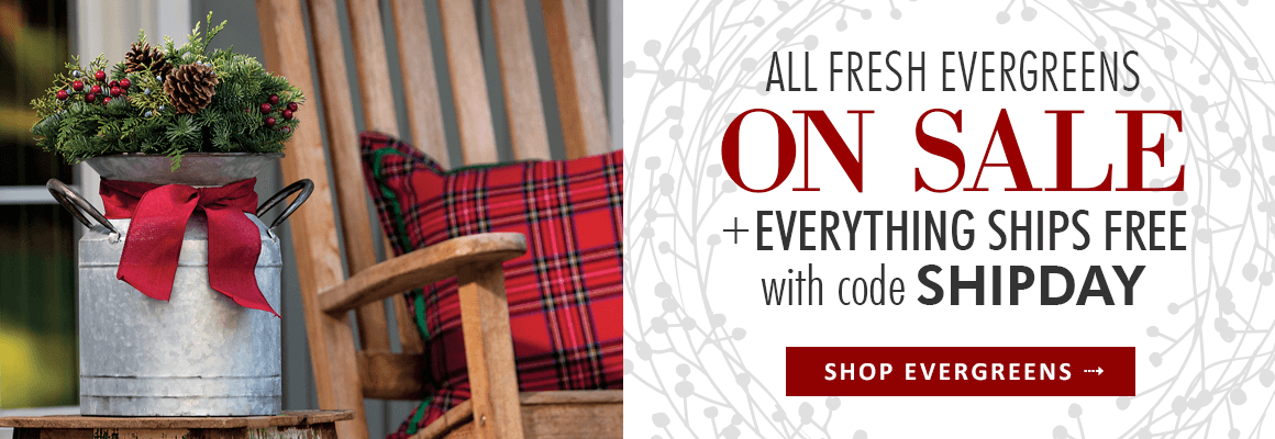 All Evergreens on Sale + Everything Ships Free with code SHIPDAY
