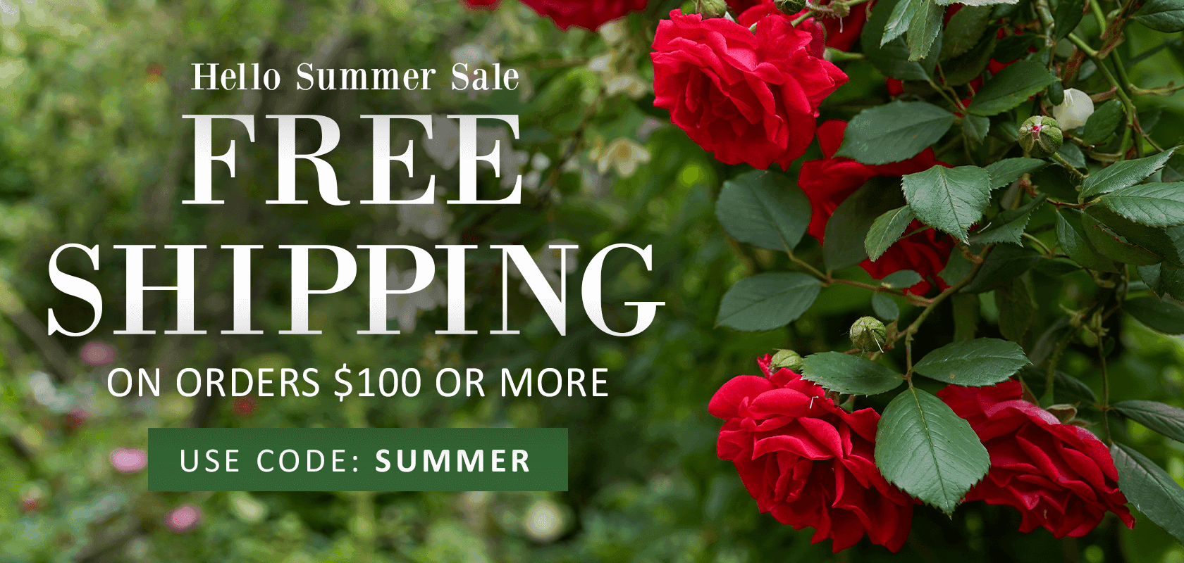 Free Shipping on orders $100 or more use code SUMMER