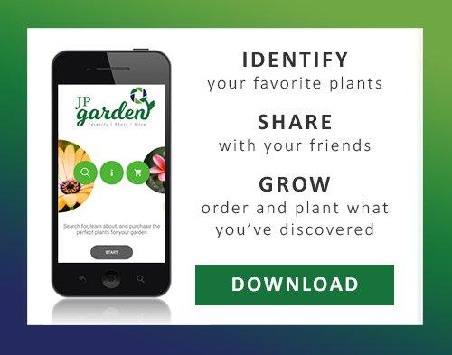 Identify, Share, Grow