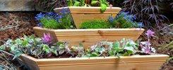 Patio Planters