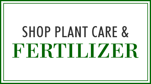 Fertilizer & Plant Care