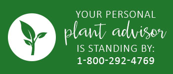 Personal PlantAdvisor