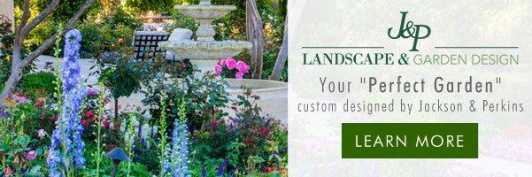 J&P Landscape & Garden Design - Your Perfect Garden custom designed by Jackson & Perkins