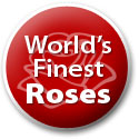 World's Finest Roses