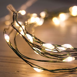 Green LED String Lights - 40 LED Image