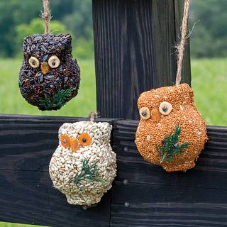 Holiday Hoots Seed Ornaments