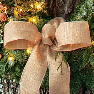 Winter Woods 30-Inch Wreath with Lights