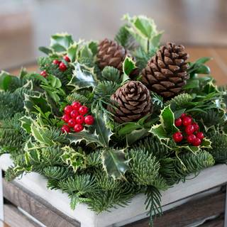 Rustic Noble Fir Centerpiece
