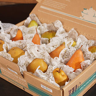 Organic European Pear Gift Box