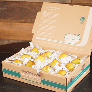Organic Warren Pears Gift Box