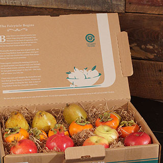 Holiday Mixed Fruit Gift Box