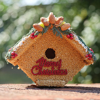 Merry Christmas Birdseed House