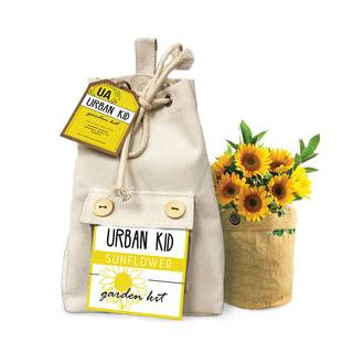 Sunflower Kids Grow Kit