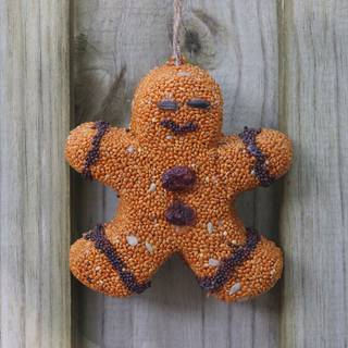 Birdseed Gingerbread Men Image
