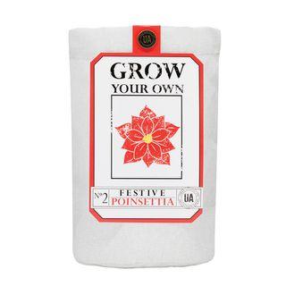 Poinsettia Grow Bag Kit