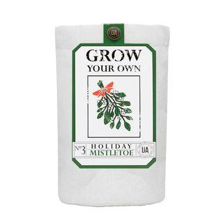 Mistletoe Grow Bag Kit