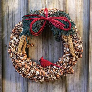 Birdseed Wreath 10-inch