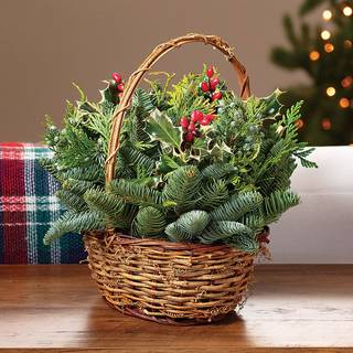 Good Tidings Evergreen Centerpiece Image