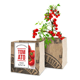 Tomato Vegetable Garden Grow Kit