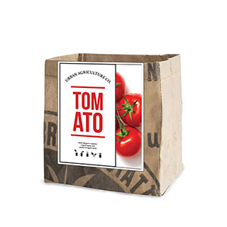 Tomato Vegetable Garden Grow Kit Image