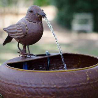 Little Bird Fountain Image