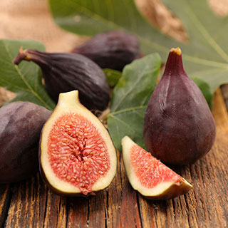 Violette de Bordeaux Fig Image