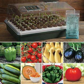Vegetable Seed Bio Dome Collection Image