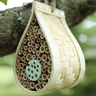 Dew Drop Bee & Bug Hotel Image
