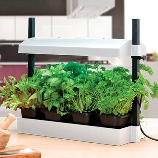 SunBlaster Micro LED Growlight Garden