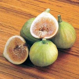 Italian Honey Fig