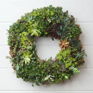 14-inch Succulent Wreath