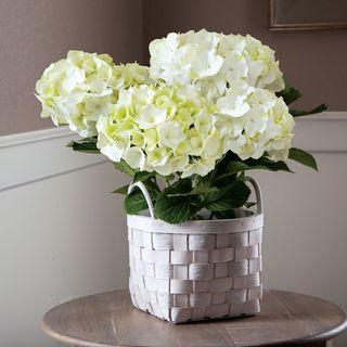 White Hydrangea in Basket