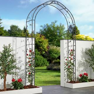 Rosetta Garden Arch