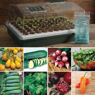 Organic Seed Bio Dome Collection Image