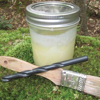 Log Plugging Kit for Growing Mushrooms Image