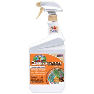 Bonide Copper Fungicide  QT