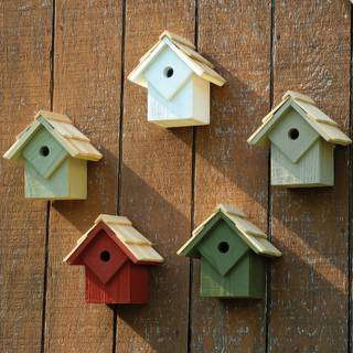 Summer Home Bird Houses, Set of 5