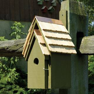 Pinion Green Bluebird Cottage Bird House